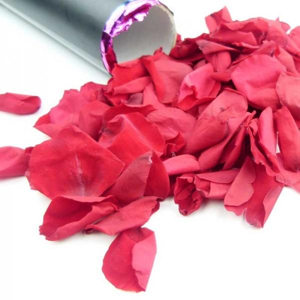 FX Bio Konfettikanone - echte rote Rosenblätter - 28cm